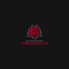 Timberwolves Logo Design