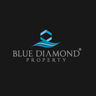 Blue Diamond Logo Design