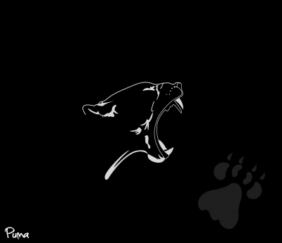 Puma Black Cat
