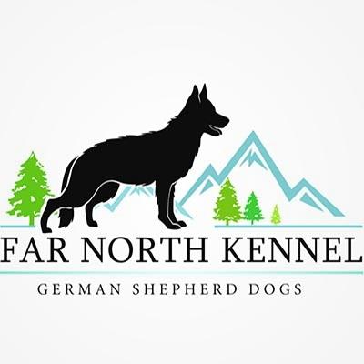 Welcome to Sugarloaf Shepherds  Championship German