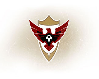 Cool Football Soccer Logo Design Logo Design Gallery